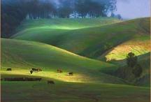 Art : Landscape / by Radek Stembera