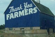 Barns, Farms and Tractors / Barns, Farms and Tractors / by Gary Stuve
