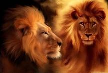 Beautiful Creatures / by ╬ God§Ångel  ╬