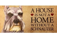 all things schnauzers and then some / by Noel Donelon
