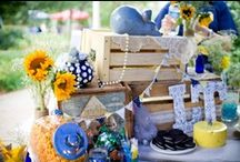 Choctaw Tailgating / by Mississippi College