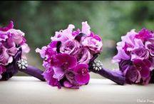 Wedding / by Carol Piernot