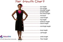Natural Hair Blogs & Articles / by NaturalHairBox