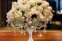 Wedding Elegant & Graceful / by Candy Sloan