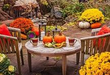 Autumn Tea Party / by Kristen Hicks