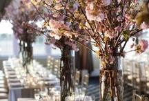 Ballroom set-up Options / by Hyatt Regency Sacramento Hotel