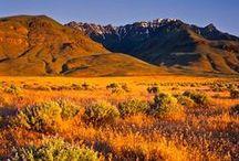 Oregon, state, USA / by randy muir