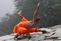 Martial Artist / by karen myatt