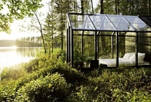 greenhouses, atriums, and other rooms of light / by Megan Hawley