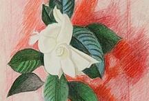 La Vie En Rose / by High Museum of Art