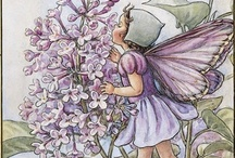 Cicely Mary Barker / by Leone