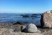 ocean love / by Donatella inspiration&realisation