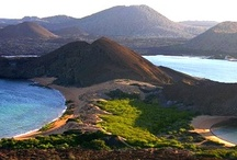 Galapagos Islands, Ecuador  / by ✈ 100 places to visit before you die