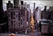 **City** / by .:S h a n a