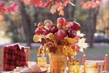 Fall Festivities / by Jordane Strasser