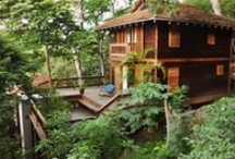 Tree Top Living / Have you ever dreamed of living in the trees? Our #TreeTop Living gives you a birds eye view of the Pacific Ocean and acres of greenery, cool winds, sounds of the ocean and the thrill of being immersed in nature. #ComeVisit #GetAway   / by Aqua Nicaragua Wellness Resort