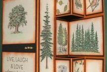 SU: Lovely as a Tree / by Brenda Strachan