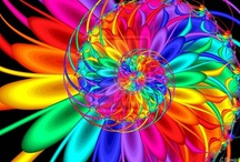 Color / by Cynthia Hucks