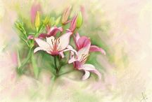 Watercolor - Flowers, Plants, Etc. / by Cathy Cullum