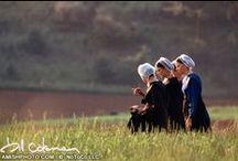 The Amish / by Katrina Castellow