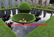 Garden / by webSHOPtraining.com