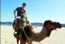 Morocco / by NDSU Study Abroad