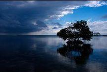 Belize / by NDSU Study Abroad