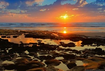 Carlsbad Sights / by West Inn & Suites