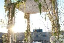 Wedding Venue Ideas / by Suanne Washington