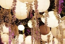 Party Decor / by Meghan Smith