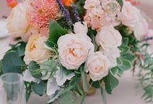 Wedding / by Meghan Smith