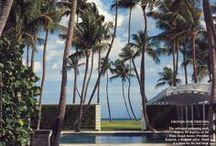 Palm Beach / by JustAskBoo