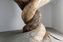 wood / by Marcos T. Cobarrubia A.