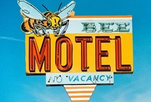 Signs for ............ motels / by Dick Bartling