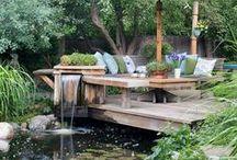 Backyards / by Cyndie Janney