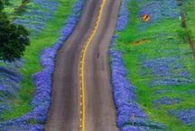 On The Road Again / by Patty McQuiston