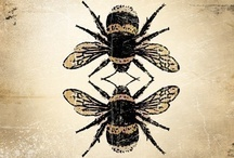 Bee nice / by Melody Minger