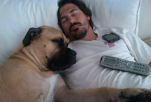 Players & Pups / Hockey Players + Dogs = Cuteness Overload / by Hockey Hunks