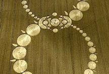 Crop circles / by Tea Weber