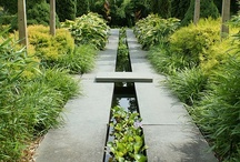 Landscaping & Outside Stuff / Urban & residential landscape design mixed with home gardening and other outdoor subjects. / by Heidi Perez
