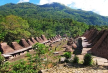 Five regions in Indonesia where you can find authentic architecture / by The Jakarta Post Travel