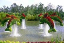 Topiary / If you would like to pin on this board, just comment ADD ME on the ADD ME Pin. No porn, bad language or excessive pinning please. Pinners ignoring this may be removed or blocked! Feel free to invite your friends. You need to be following someone to invite them. Happy Pinning, Rob http://pinterest.com/robchiv/ / by Robert Chiverton