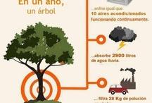 Infografías Naturaleza y ecología / by El Biocultural