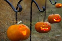 Halloween / by Jennifer Camilleri