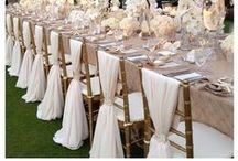 Chair Sashes / by Orlando Wedding & Party Rentals