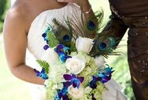 Peacock Inspired Wedding / by Orlando Wedding & Party Rentals