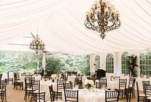 Black & White Weddings / Planning a black & white themed wedding? Here are some ideas to create a classy, elegant look that will certainly wow your guests! / by Orlando Wedding & Party Rentals
