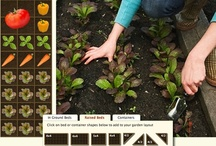 Home Sweet: Green & Growing / How does your garden grow? / by La Nic