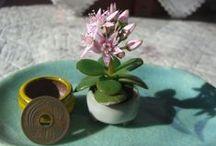 Bonsai and Ikebana / by Dr. Moku
