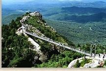My state, North Carolina :) / by Sonja Tobler Carpenter